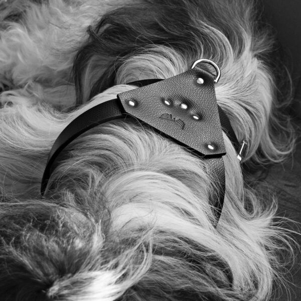 Maestoso Black Leather Dog Harness