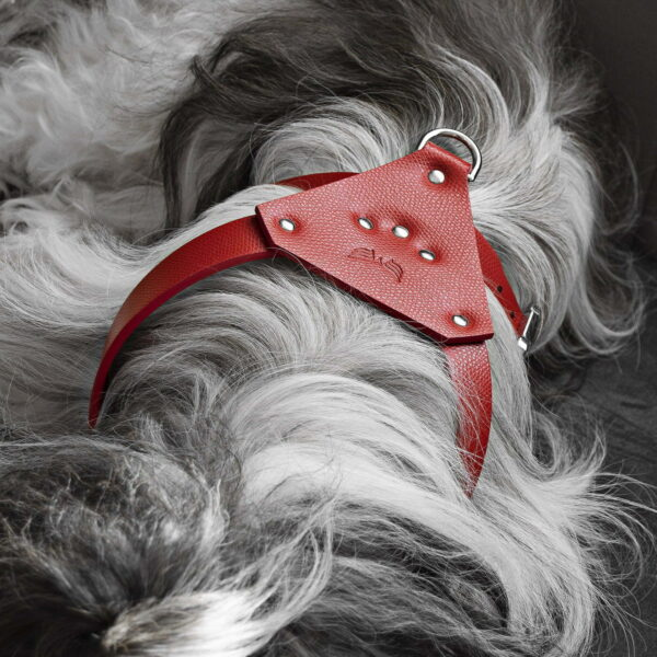 Maestoso Red Leather Dog Harness